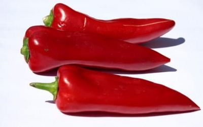 Gevulde paprika's